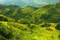 Những địa điểm du lịch lý tưởng cho dịp tết nguyên đán 2016