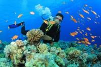 Khám phá các môn thể thao dưới nước khi du lịch Đà Nẵng